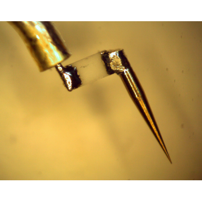 Custom Applications (In-line chip resistor /BeCu contact probe)